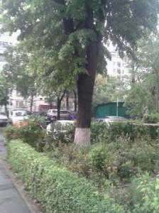 city after rain 2